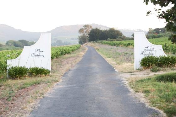 Nicole-Henriques-Photography-Stellenbosch-Wedding-2012-279